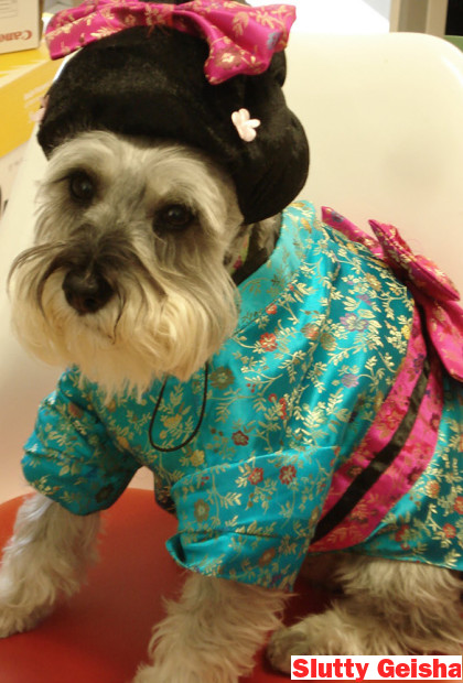 Slutty Dog Costumes Geisha