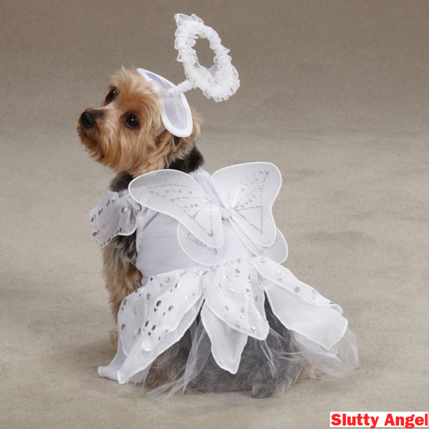 angel paws halloween dog costume 1