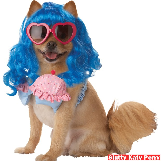 cupcake delight dog costume
