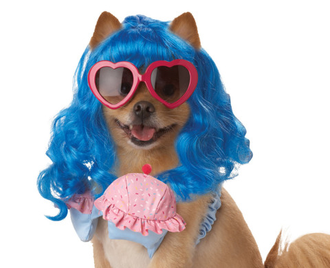 10 Slutty Dog Costumes