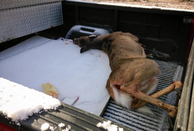 Aram Deer Hunting 01