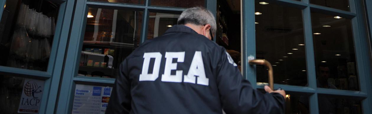 dea agent resume