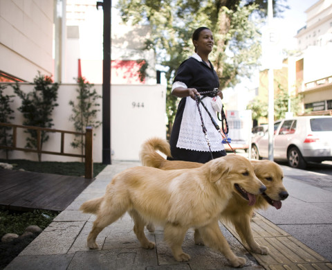 A maid walks Golden Retriever puppies along Oscar Freire street, Sao Paulo's version of Rodeo Drive in Beverly Hills, in Sao Paulo July 17, 2008. Thanks largely to a commodities and credit boom, Brazil is seeing a burst of economic growth that is lifting millions out of poverty in a country long known for its stark inequality. Brazil's billionaire club is also growing at an unprecedented pace. According to a survey by local business magazine Exame, at least 14 Brazilians became billionaires last year, almost a five-fold increase over 2006. Picture taken July 17, 2008. To match feature BRAZIL-ECONOMY/RICH REUTERS/Bruno Miranda (BRAZIL) - RTR20FTY
