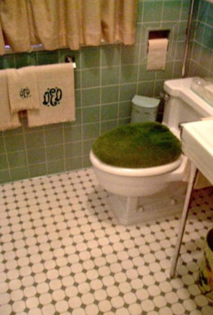 Toilet Enthusiasts 02