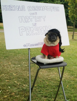 Marina Abramopug Is the World's Most Important Dog Performance Artist