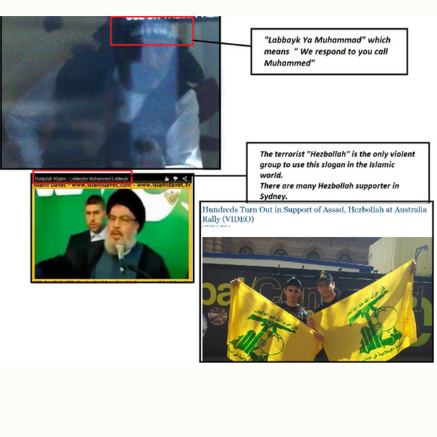 Hezbollah Picture