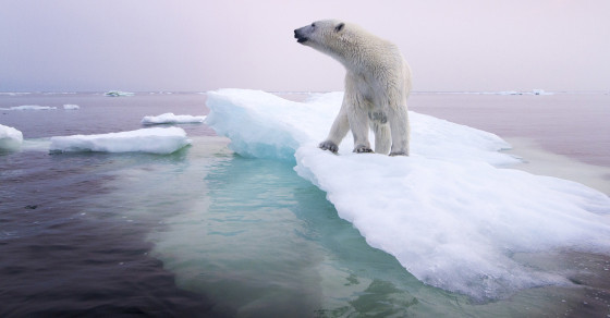 We Actually Don't Know What Americans Think About Global Warming