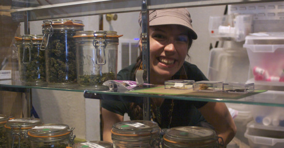 Jobs in the Weedconomy: The Budtender