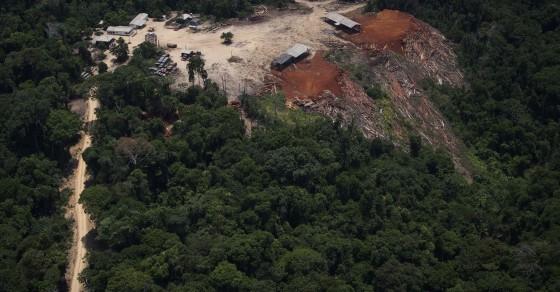 Rainforest Destruction Isn't Getting Better, It's Getting Worse