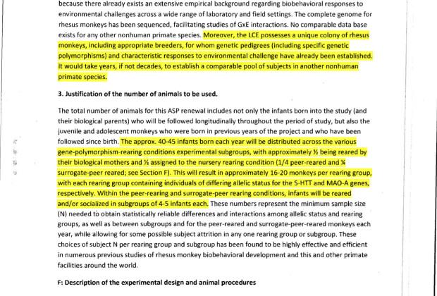 Animal study proposal