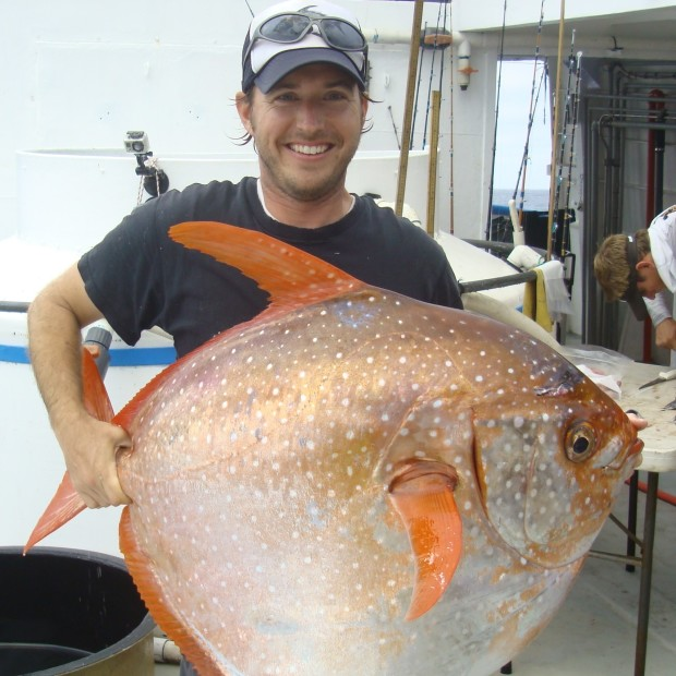 Warm blooded Fish Opah 004