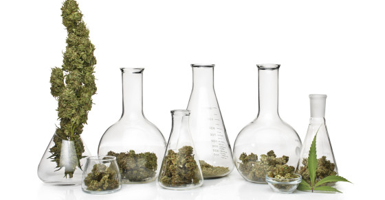 Junk Science: Medical Marijuana Goes Up In Smoke