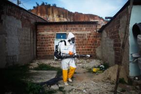 Zika Virus And How Sports Spread Disease
