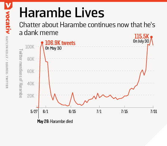 Chatter about Harambe continues now that he's a dank meme