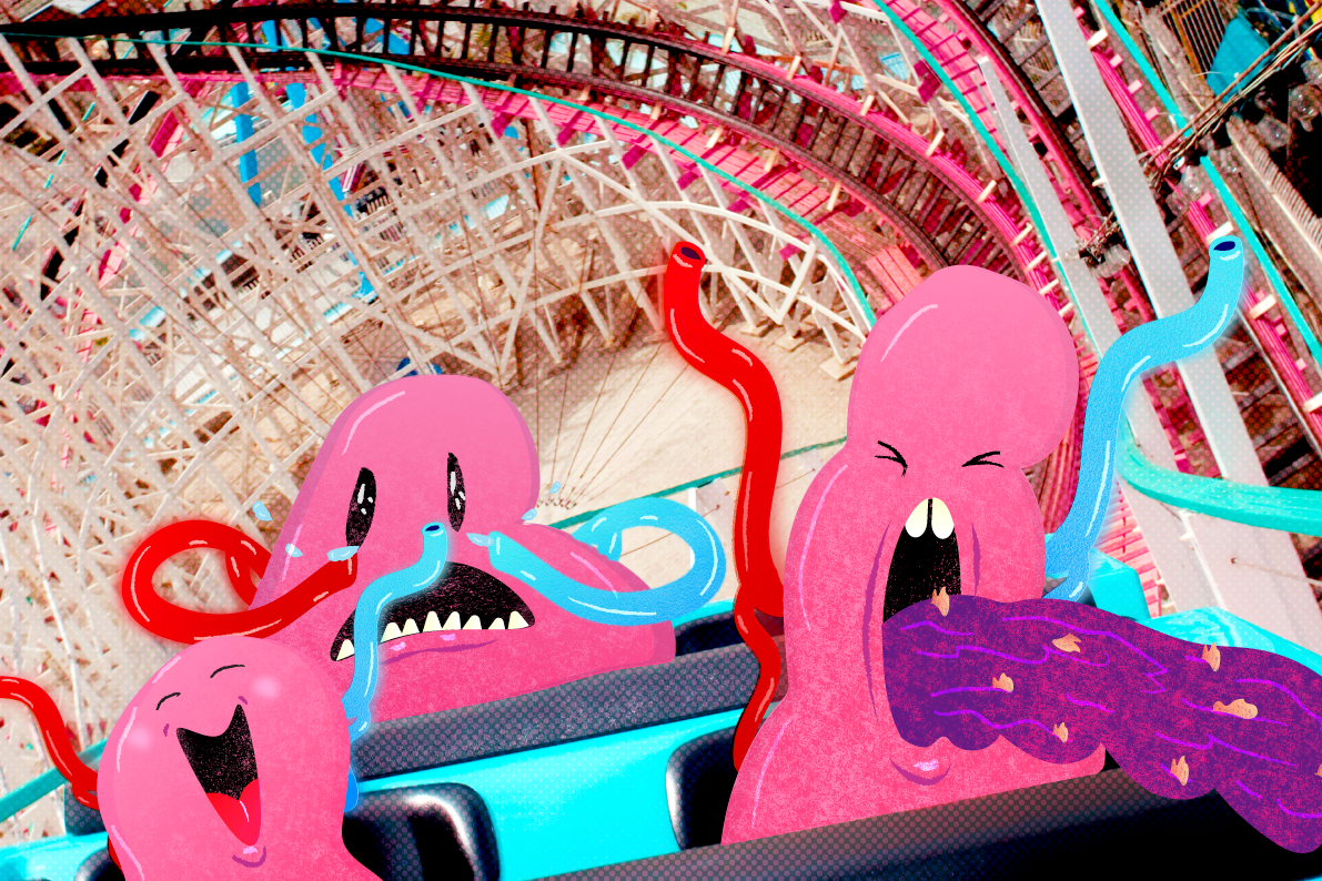 roller coasters and their theory Roller coasters, at some point you will probably feel like your stomach is dropping out of your body although i love roller coasters, not everyone likes them some people think they are too scary.