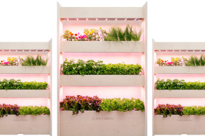 This NASA-Inspired Garden Grows Food In Your Home