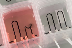 This Is The First 3D-Printed Heart-On-A-Chip