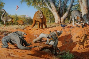 Ancient Poop Reveals Humans Drove Australia's Giant Animals Extinct