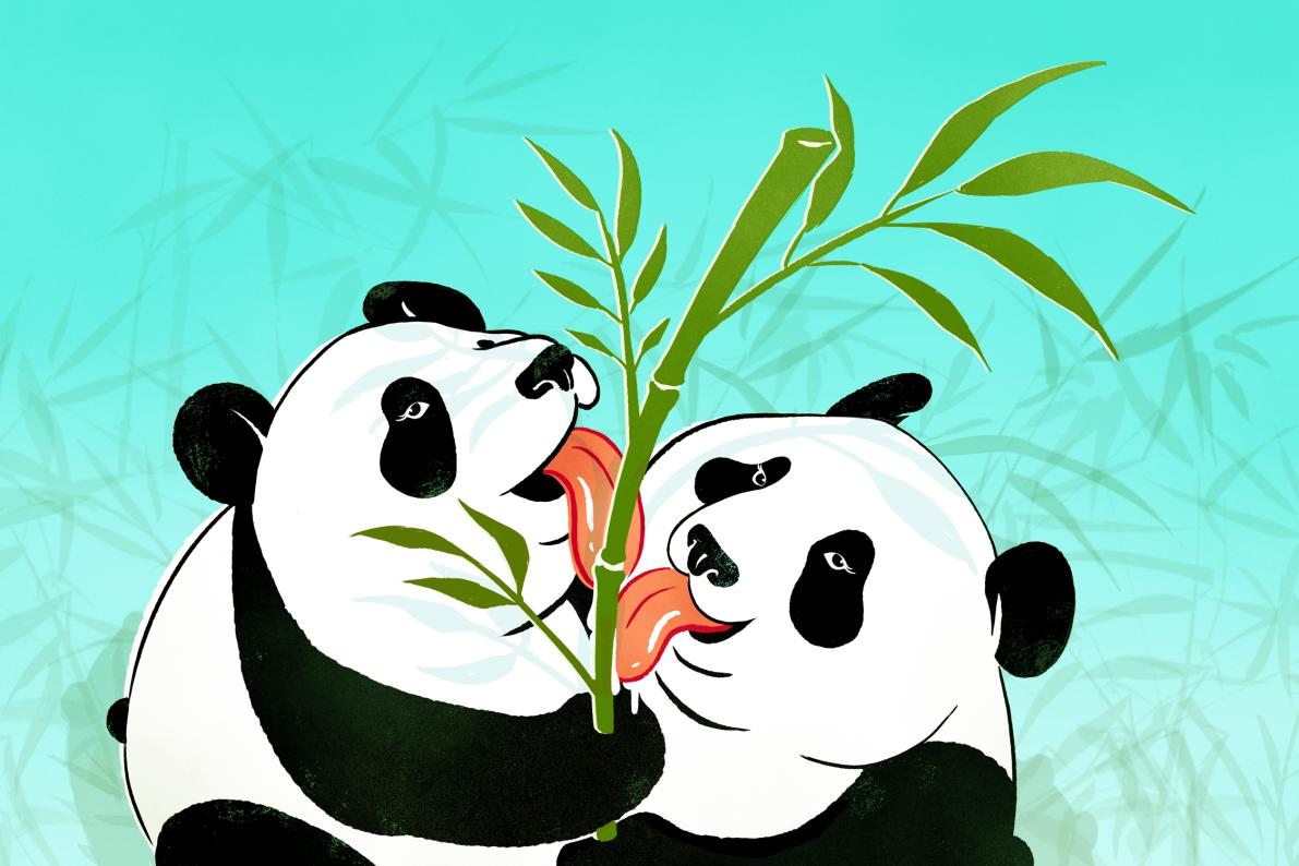 panda porn site