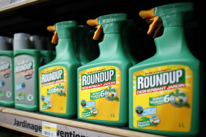 Monsanto Accused Of Ghostwriting Study Saying Its Weed Killer Is Safe