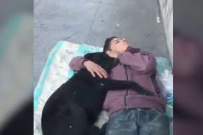 Syrian Boy Lived Alone With His Dog For 8 Months