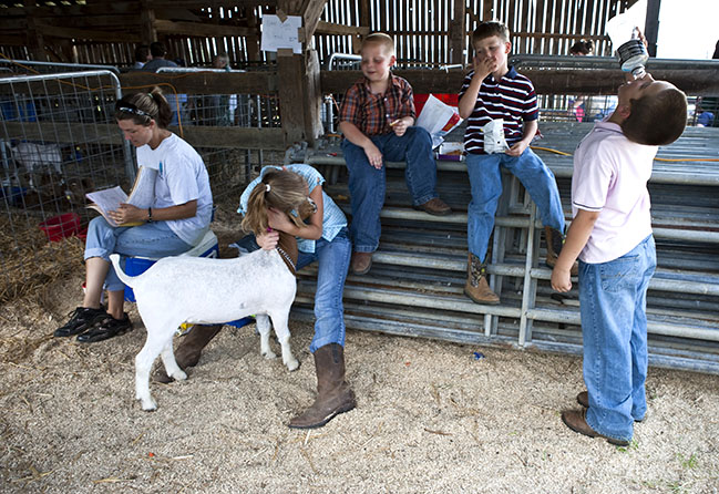 Backstage at the 2010 goat show in Danville, Kentucky