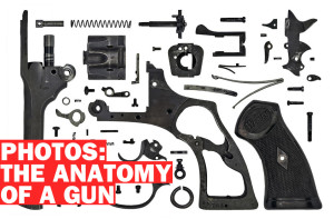Gun Anatomy Poster 01387385800