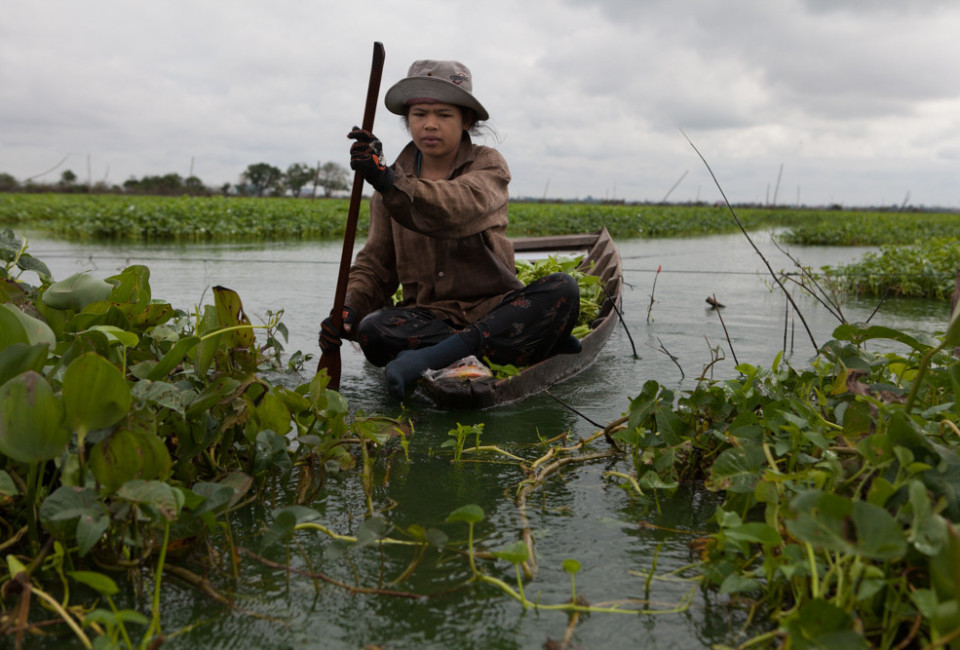 Cambodia Fighting 29