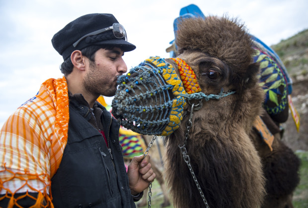 """Ahmet Pala gives a kiss to a camel called Basharan before the camel wrestling tournament. Camel owner Mustafa Eyvas said that """"camels are really sensitive, and more intelligent than humans."""" Photo by Jodi Hilton/Vocativ"""