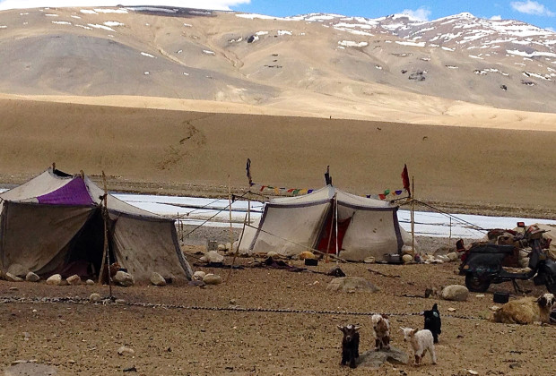 Anlay Fu High Altitude Voting In India Isolated Tent