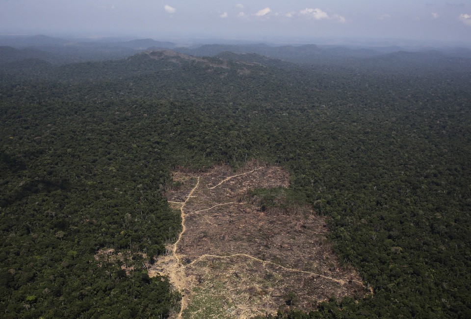 An aerial view of a tract of Amazon jungle recently cleared by loggers and farmers near the city of Novo Progresso, Para statel.