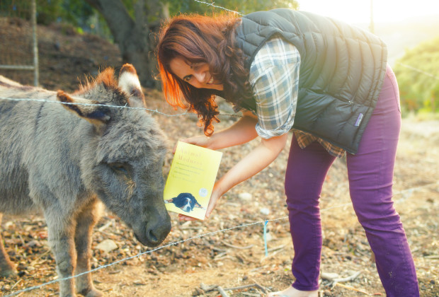 Laurel Braitman Animal Madness 05