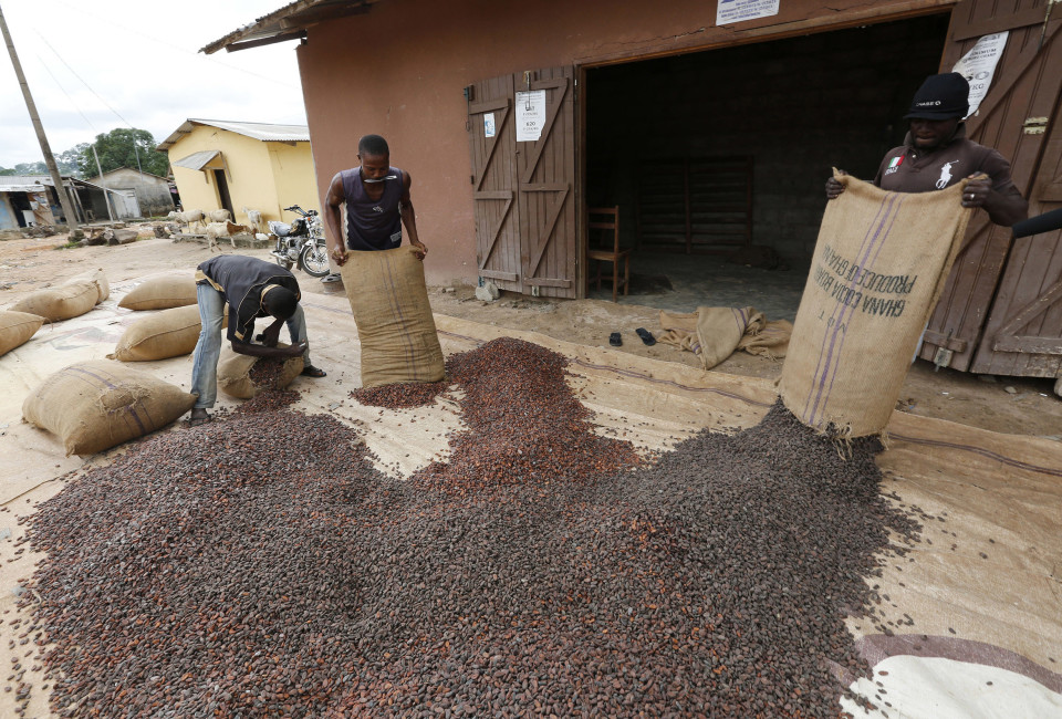 Men pour out cocoa beans to dry in Niable, at the border between Ivory Coast and Ghana, June 19, 2014.