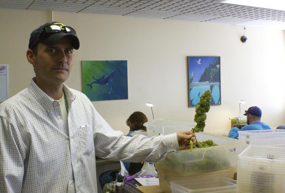 Weed Eco Grower_01