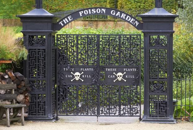 18 Oct 2013, Alnwick, Northumberland, England, UK --- Poison garden at Alnwick Garden, Northumberland, England, UK. --- Image by © Duncan Andison/Corbis