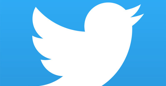 Twitter Announces Potential Changes, Users Lose Their Shit