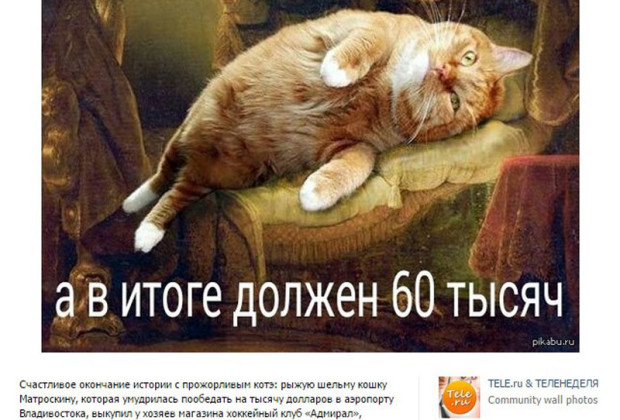 RussianThiefCat3