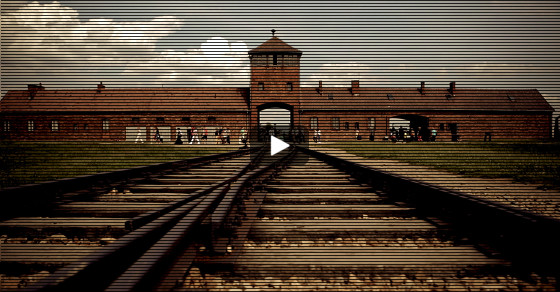 Is Auschwitz the New Coachella?