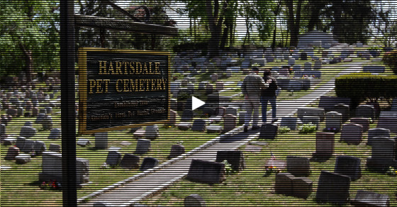 Four Feet Under: America's Oldest Pet Cemetery