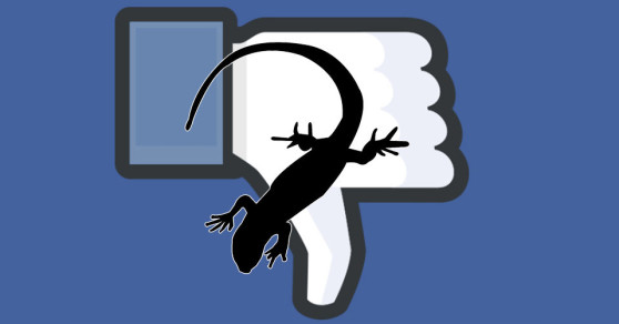 Facebook Goes Down, Lizard Squad Wants Credit