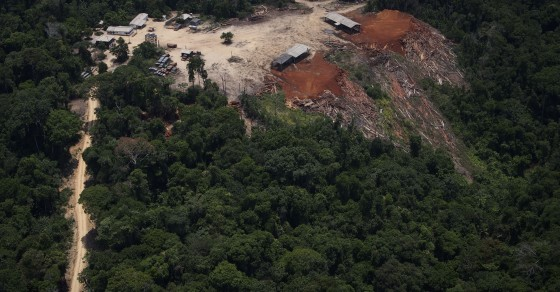 Rainforest Destruction Isn't Getting Better, It's Getting Worse