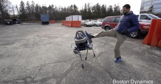 Is It Wrong To Kick A Robotic Dog?