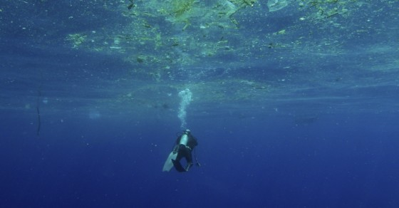 The Ocean, World's 7th Largest Economy, Is Declining