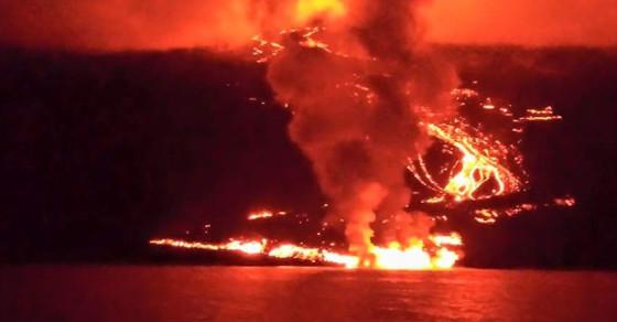 Galapagos Volcano Threatens World's Rarest Iguana