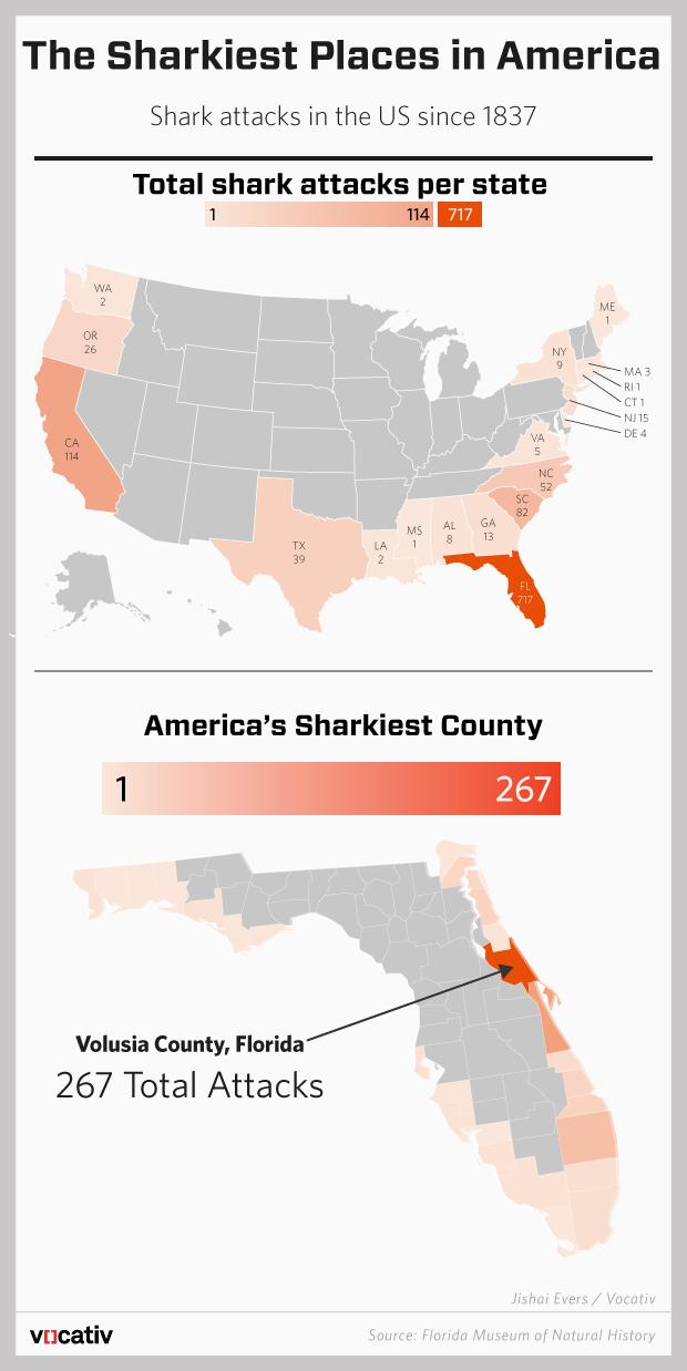 16 7 15 Shark Attacks.r4