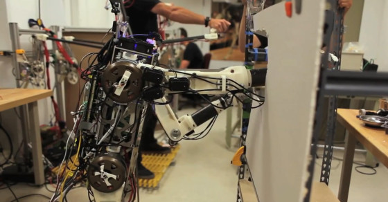 This Robot Uses Human Reflexes To Stay Upright