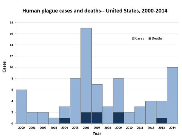 plague2000 2014