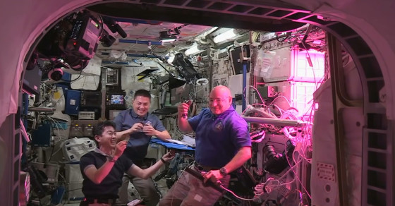 Astronaut's Year In Space Half Way Over