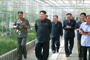 North Korea Claims It Has Cured Hangovers