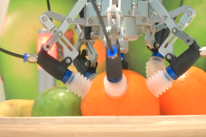 This Robot Can Sort Fruit Without Bruising It